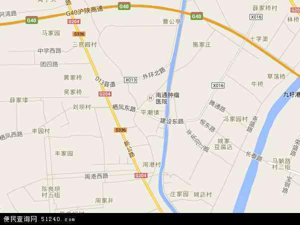 中国江苏省南通市通州区平潮镇地图(卫星地图