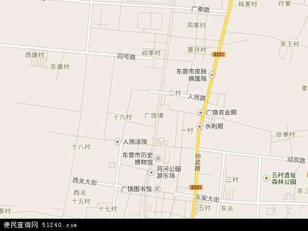 中国山东省东营市广饶县广饶滨海新区管理委员会地图(卫星地图)