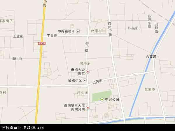 中国辽宁省盘锦市兴隆台区渤海地图(卫星地图)