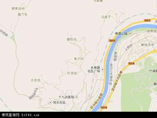 中国四川省攀枝花市东区枣子坪地图(卫星地图)