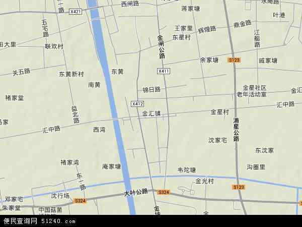 中国上海市奉贤区金汇镇地图(卫星地图)