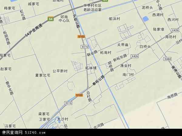 中国上海市奉贤区柘林镇地图(卫星地图)
