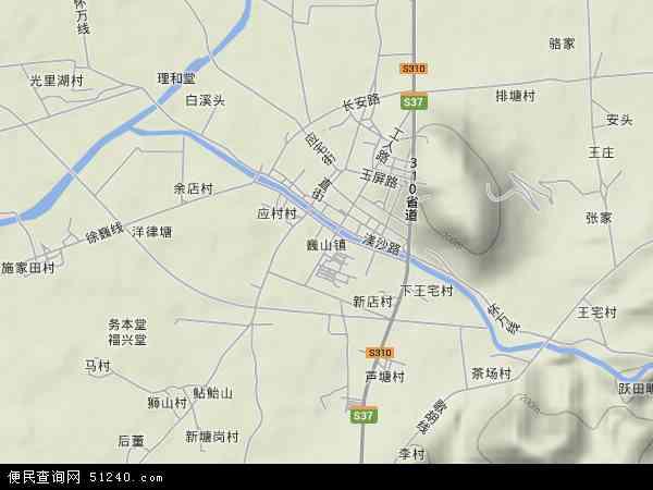 中国浙江省金华市东阳市巍山镇地图(卫星地图)
