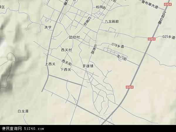 中国云南省曲靖市罗平县罗雄镇地图(卫星地图)