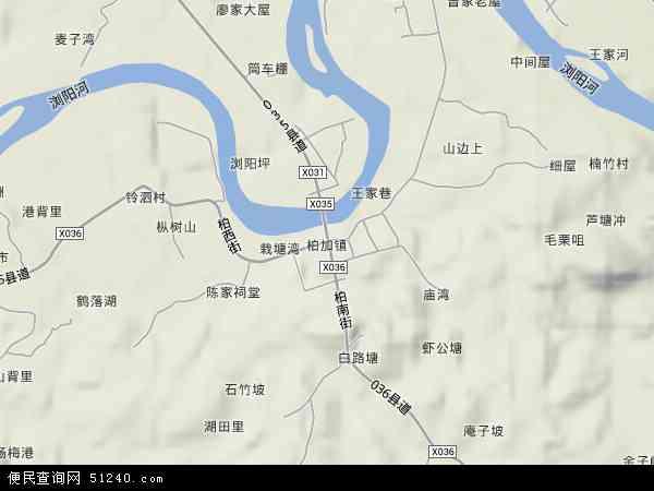 柏加镇地形地图