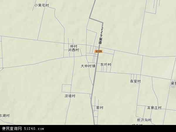 中国山东省临沂市苍山县大仲村镇地图(卫星地图)