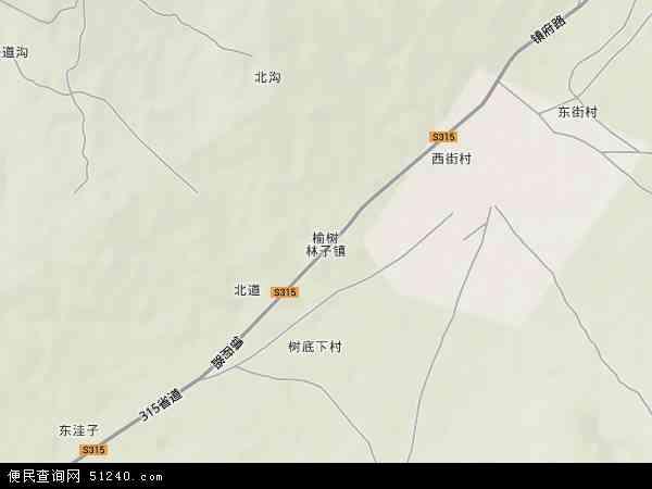 榆树林子镇地形地图