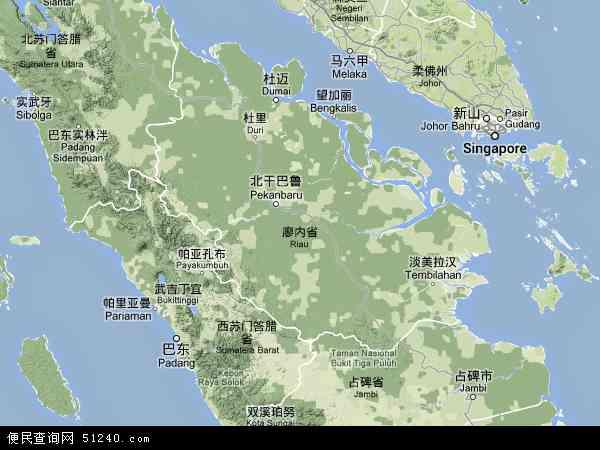 印度尼西亚廖内地图(卫星地图)