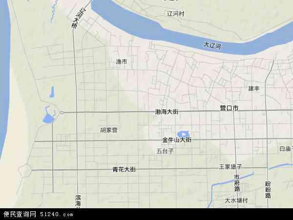 中国辽宁省营口市西市区地图(卫星地图)
