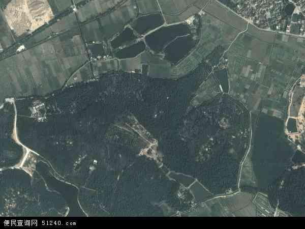 中国广东省中山市南朗镇左步地图(卫星地图)