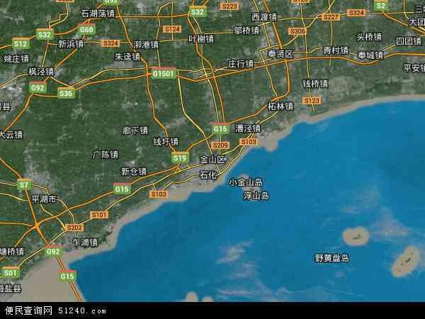 中国上海市金山区地图(卫星地图)