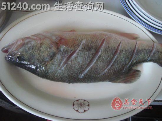 红烧芹菜-菜谱做法-菜谱-鲈鱼热菜-天天饮黄豆芽肉丝炒菜谱家常图片